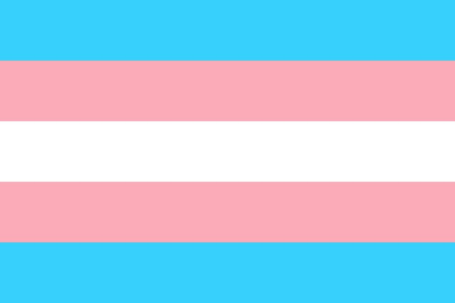 trans pride vlajka